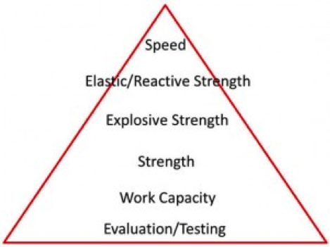 Figure 1. Vermeil's Heirarchy of Athletic Development