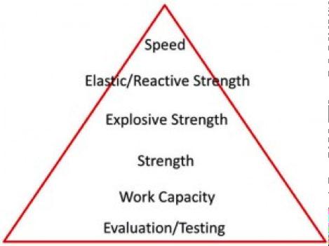 Figure 1. Vermeil's Heirarchy of Athletic Development