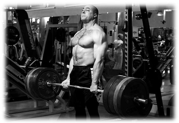 Voy al gym y te cuento como entreno (Programa 2015)