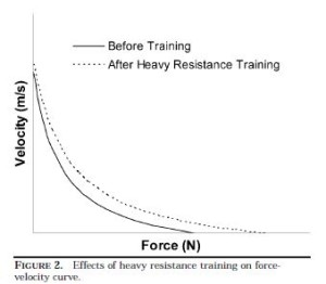 Effects of Heavy Strength Training