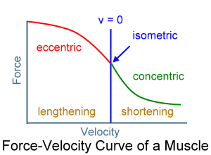 how to find final velocity from force time graph