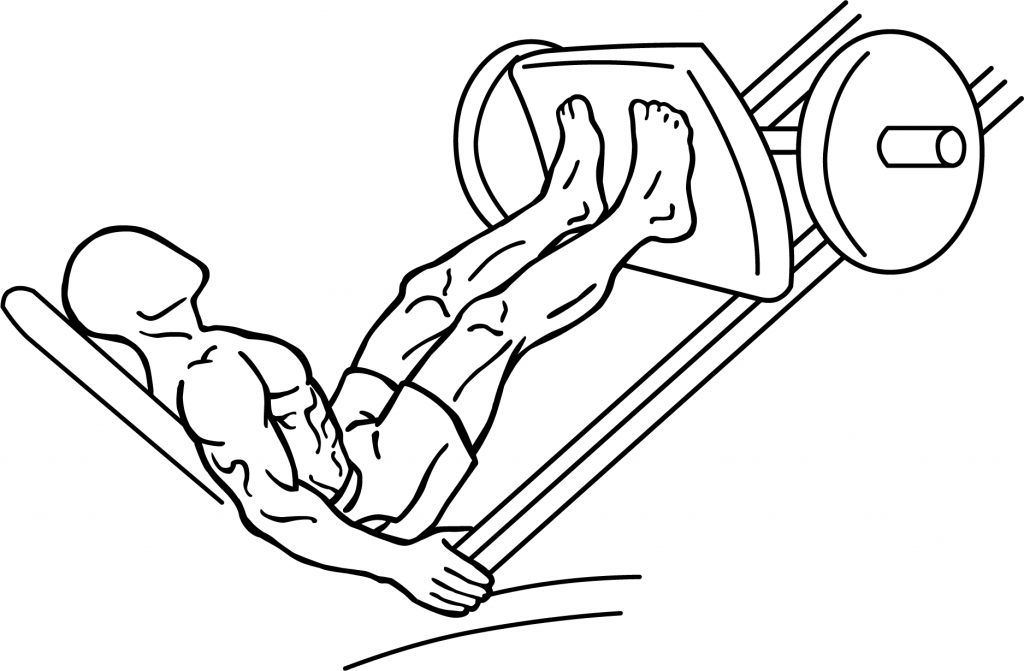 Leg press machine diagram top