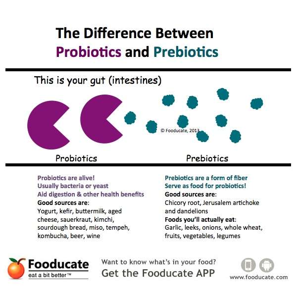 Probiotics-vs-Prebiotics-Graphic