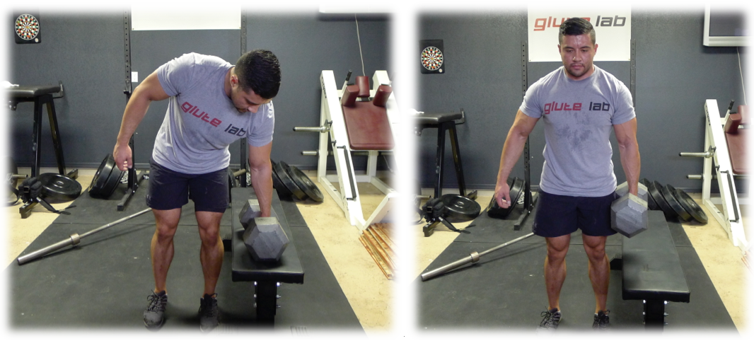 Core Stability Training For The Advanced Lifter Bret