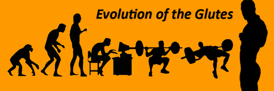 evolution-orange3