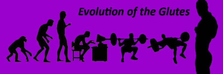 evolution-purple3