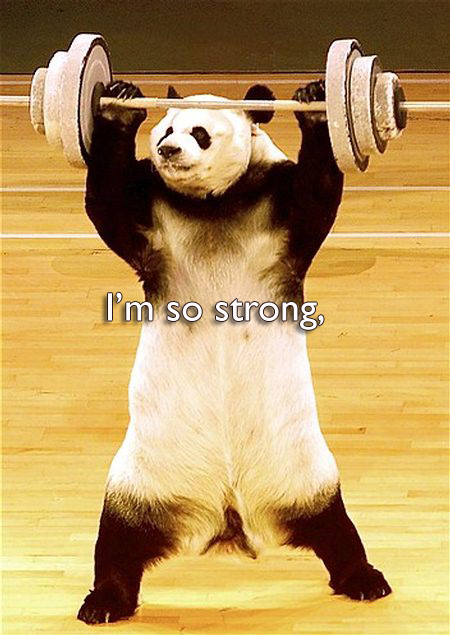im-so-strong