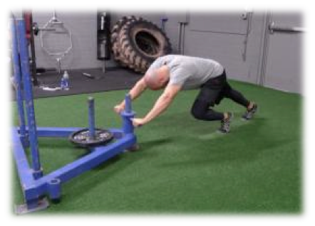 sled low handles
